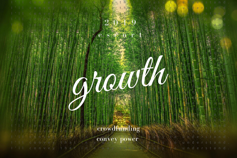 2019年の抱負は「発展」。去年芽が出た事業をコツコツと堅実に成長させます